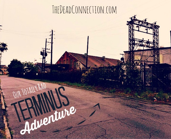 adventure to terminus